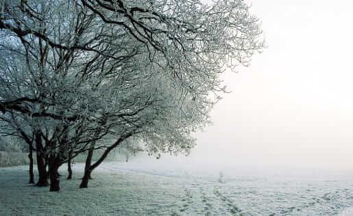Tipps für den Winter